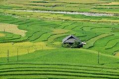 露台的米领域和H ` Mong种族人民的传统房子 图库摄影