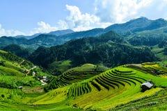 露台的米领域和H ` Mong种族人民的传统房子 库存照片