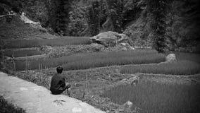 露台的米领域的年轻男孩 免版税库存照片