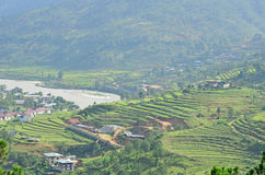 露台的米领域风景看法在Punakha 免版税图库摄影