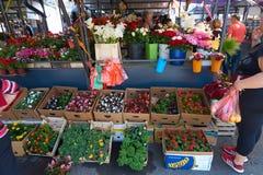 露天市场在贝尔格莱德 图库摄影