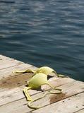 露胸部的海滩 库存图片
