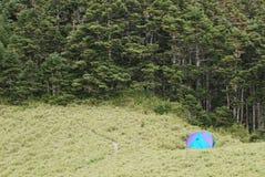 露营地森林 库存照片
