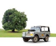 露营车与树的徒步旅行队斑马 免版税库存图片