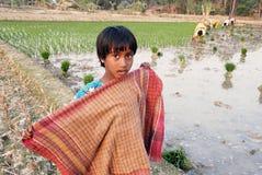 青少年女孩农村的印度 免版税图库摄影