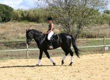 青少年的马骑术 免版税图库摄影