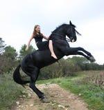 青少年黑色的马 免版税图库摄影