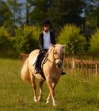 青少年白肤金发的小马的乘驾 图库摄影