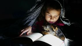 青少年的儿童读书女孩在与说谎在毯子下的手电的晚上读一条书狗 影视素材