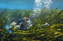 青少年的轻潜水员-在磁带Gras的表面 库存图片