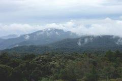 青山和树看法  山和大厦看法路的看法穿过自然路线 敌意 免版税库存图片