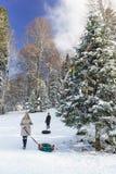青年人在可膨胀的管材,雪小山乘坐 在用Ch装饰的山具球果林木的晴朗的冬日 免版税库存照片