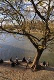 青年人在巴黎享受春天温暖,坐塞纳河的银行 库存照片