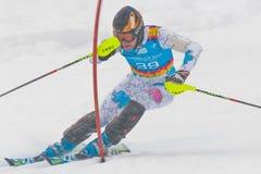 青年奥林匹克运动会2012年 免版税图库摄影