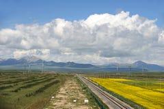 青海西藏铁路 库存图片