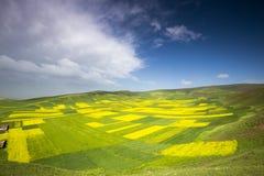 青海西藏高原的山和湖 免版税库存照片