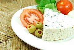 青纹干酪 免版税库存照片