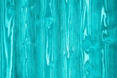 青绿的硬木槭树篮球场地板被观看从木b上 库存照片