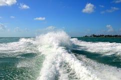 青绿色波浪和伯利兹海岸线 免版税库存图片