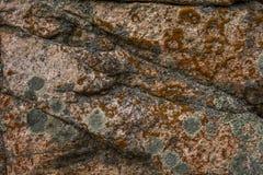 青苔岩石石头纹理 自然样式纹理  无缝的石纹理 图库摄影