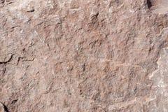 青苔岩石石头纹理 花岗岩 背景 免版税图库摄影