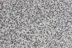 青苔岩石石头纹理 免版税图库摄影