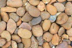 青苔岩石石头纹理 免版税库存照片