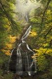 青苔幽谷在秋天落 免版税库存图片
