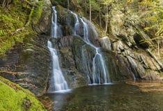 青苔幽谷秋天和绿色水池 免版税库存照片