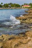 青苔报道了岩石和热带海浪 库存照片