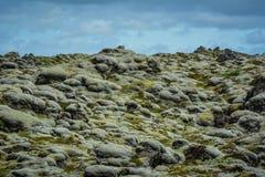 青苔报道的熔岩荒野用蓝天在冰岛 库存照片