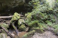 青苔盖了岩石和小小河 免版税库存图片