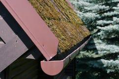 青苔盖的屋顶 库存图片