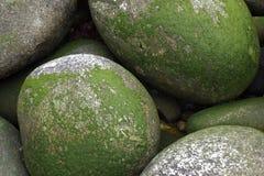 青苔石头 免版税库存图片