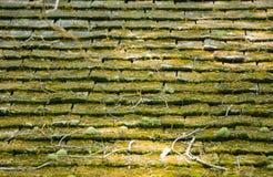 青苔被盖的被风化的木木瓦屋顶-水平的背景 库存照片