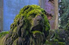 青苔隐蔽的石狮子头 免版税库存图片