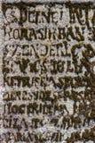 青苔以在老墓碑的信件形式 库存照片