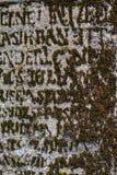 青苔以在老墓碑的信件形式 免版税库存图片