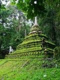 青苔stupa在清迈泰国 免版税库存图片