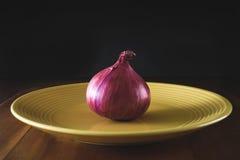 青葱,葱菜,红洋葱 免版税库存图片