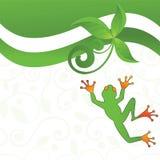 青蛙乐趣 免版税图库摄影