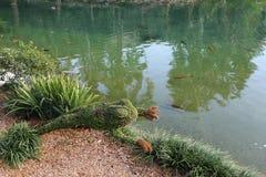 青蛙厂修剪的花园 库存图片