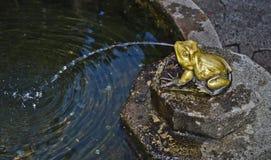 青蛙喷泉 免版税图库摄影