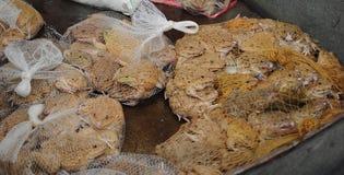 青蛙在市场上 库存照片