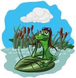 青蛙在沼泽和梦想坐,看天空 免版税库存照片