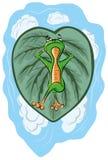青蛙在绿色叶子和梦想说谎 库存图片