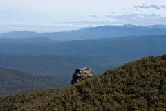 青蛙塑造了岩石在Humpridge步行在Fiordland/南方在南岛在新西兰 免版税图库摄影