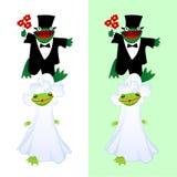 青蛙婚礼 图库摄影