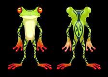 青蛙毒物 免版税库存图片