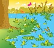 青蛙池塘 图库摄影